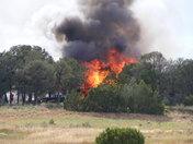 fire in Cimarron NM