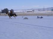 Horse drawn tubing!!