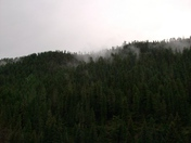 PECOS CABIN BEFORE STORM