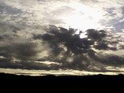 Morning after rain.jpg