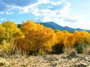 My Back Yard in Placitas NM