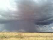 t-storm.JPG