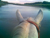 Horses View:  Night Fall on the Rio Grande