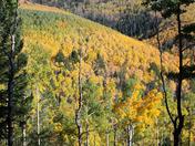 Santa Fe Fall Colors