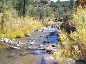 Jemez Stream and Fall Colors