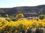 Jemez Valley Fall