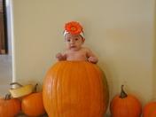 Baby Faith Montoya in a Pumpkin!
