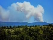 Jemez Fire