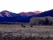 Sundown in Taos Thanksgiving #2