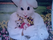 This is DD with easter bunny ...
