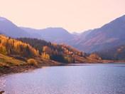 Trout Lake Fall 2010