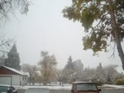 snowing in Chama