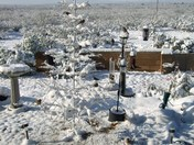 Snow in Alamogordo Dec, 04, 2009