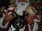 Civitan&Dogs2009 095.jpg