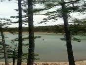 Morphy lake mora nm fire