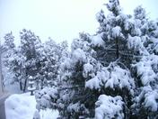 2010 winter 059.JPG