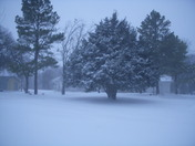 Blizzard in Pauls Valley, OK