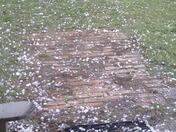 hail from Sulphur
