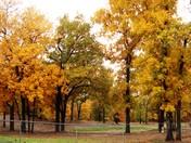 Autumn 012.JPG