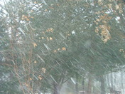 Snow in Southeast Logan County