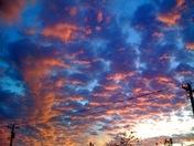 November 8 2009 Sunset