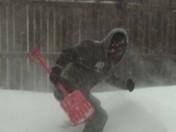 Snow Picture.