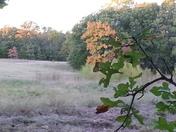 my hunting spot