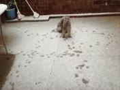 Snow...n.w.okc
