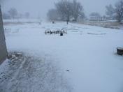 Snow in Sharon, OK