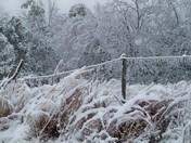 Winter Mess