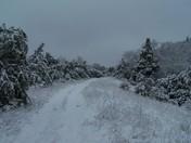 Snowy Road Ada
