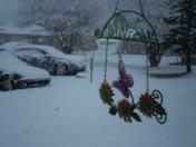 Snow in Shawnee 2-20-13