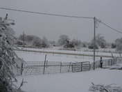 Ada Snow 2010