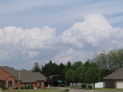 Looking East from SW29th/Morgan Rd.