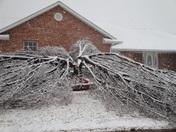 2010 Ice Storm - Lindsay