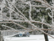 FrozenFogPoncaCityJan10