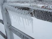 Ice on the split rail fence