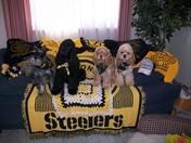 Go Steelers!!