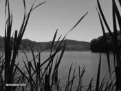 virgin run lake