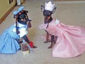 Courtney & Brittney,Wizard of Oz
