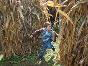 Kieran & the corn maze