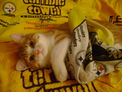 Mike says:  GO STEELERS