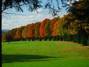Fall near Ligonier