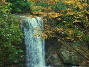 Cucumber Falls in Autumn