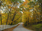 Country road in Amity, PA