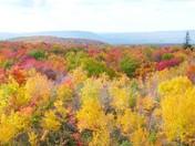 Autumn in Pennsylvania