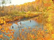 Steelhead Fishing Elk Creek