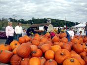 Trax Farm Pumpkin Harvest.jpg