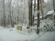 Fresh February snow in Tionesta Pa.