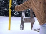 jan 9 2010 snow 002.JPG